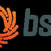 Broadband Service Group Inc.